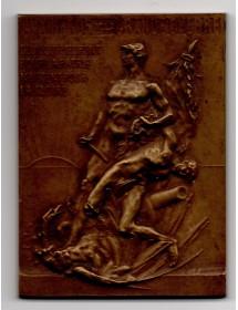 Médaille Bronze - Monument aux morts Cours Sully